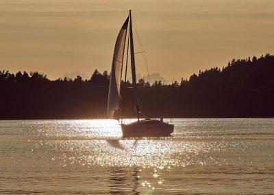 Sun Odyssey 319 -009